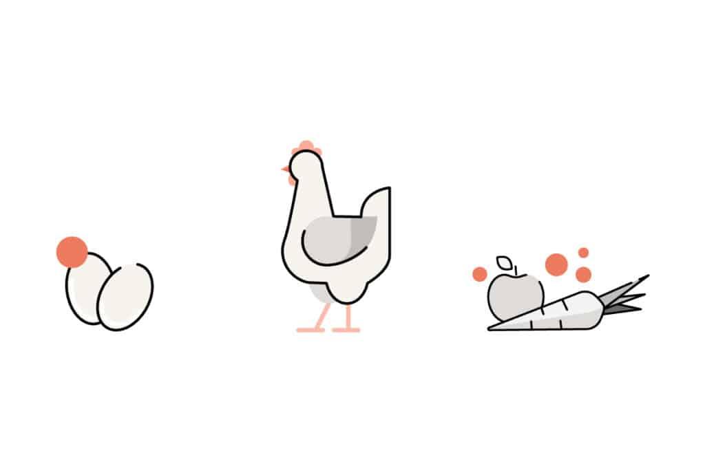 Graphik: Eier, Huhn und ungewaschenes Gemüse