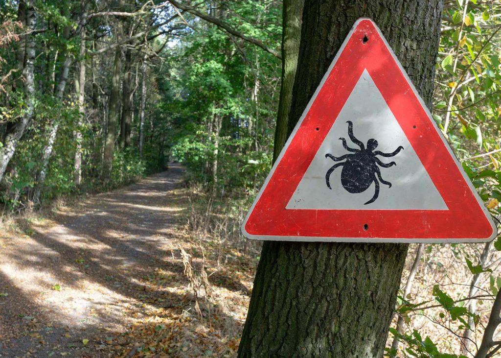 Zeckenwarnschild im Wald